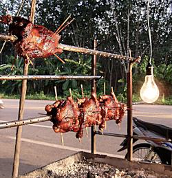 Auch in Thailand momentan auf verwaistem Posten_Photo_by_Gerd_Ackermann_www.imbisskult.de